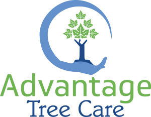 Advantage Tree Care Logo