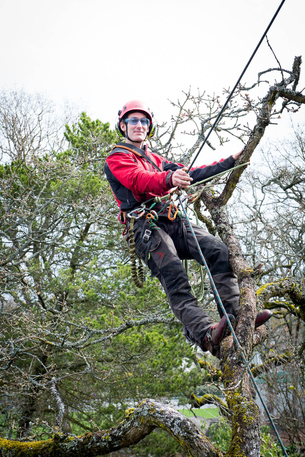 Owner operator of Advantage Tree Care the best tree service company in Victoria BC